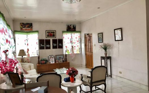 HOUSE AND LOT FOR SALE IN MANDURRIAO | ILOILO PRIME PROPERTIES